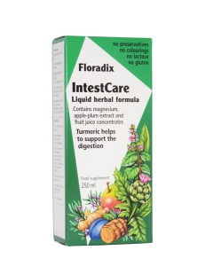 SALUS FLORADIX INTESTCARE 250ML